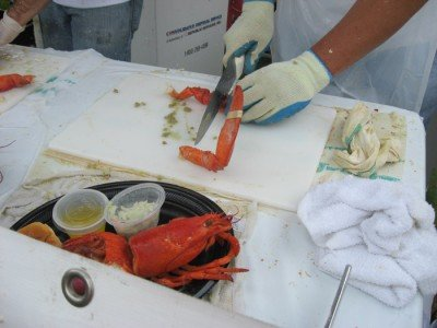 Lobster cracking station