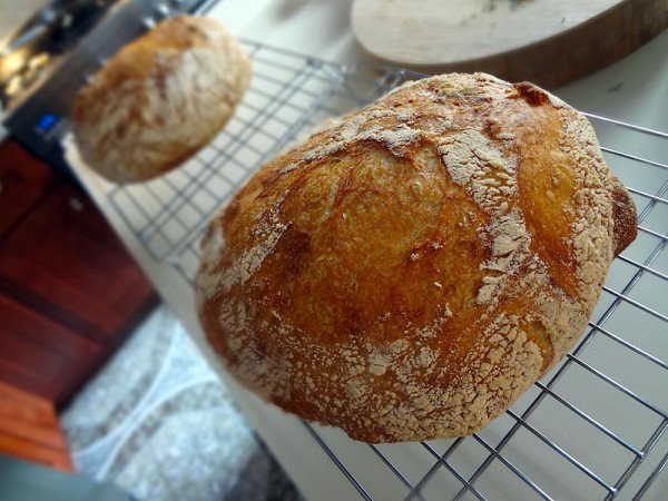 homemade-bread-loaves
