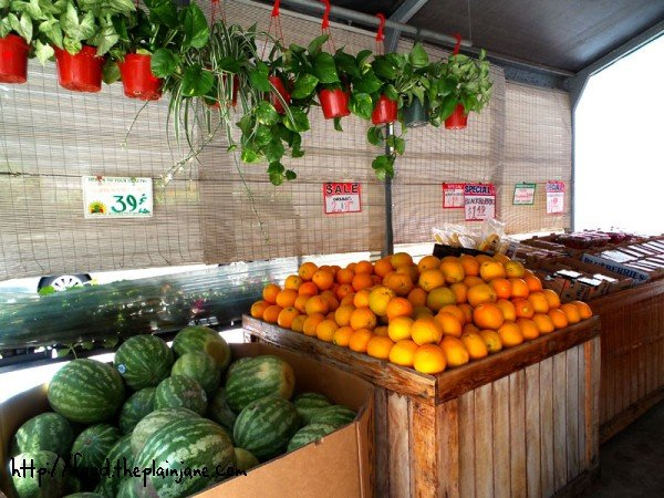 fruits and plants at farmers outlet